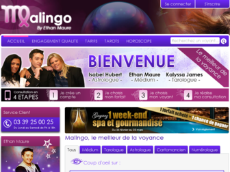 malingo.fr website preview